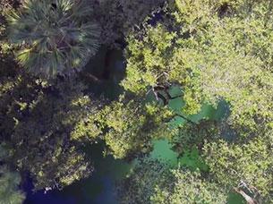Crown Light Aerial Video